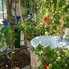 Апартаменты Apartments Cerro фото 8