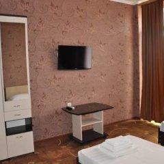 Гостевой Дом Лазурный Номер Делюкс с разными типами кроватей фото 5