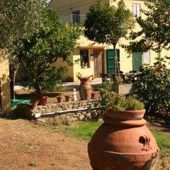 Отель Agriturismo Greppo All'olivo Кастаньето-Кардуччи фото 3