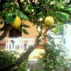 Отель Villa Oasi Del Plemmirio Сиракуза фото 6