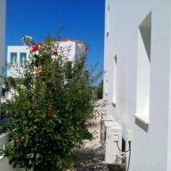 Отель Villa Doris Кипр, Протарас - отзывы, цены и фото номеров - забронировать отель Villa Doris онлайн