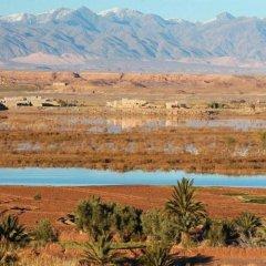Отель Dar Bladi Марокко, Уарзазат - отзывы, цены и фото номеров - забронировать отель Dar Bladi онлайн фото 8