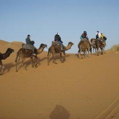 Отель Merzouga Camp Марокко, Мерзуга - отзывы, цены и фото номеров - забронировать отель Merzouga Camp онлайн приотельная территория фото 2