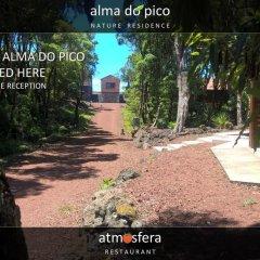 Отель Alma do Pico Португалия, Мадалена - отзывы, цены и фото номеров - забронировать отель Alma do Pico онлайн фото 7