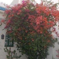 Отель Djerba Saray Тунис, Мидун - отзывы, цены и фото номеров - забронировать отель Djerba Saray онлайн фото 7