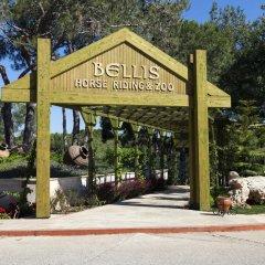 Bellis Deluxe Hotel Турция, Белек - 10 отзывов об отеле, цены и фото номеров - забронировать отель Bellis Deluxe Hotel онлайн