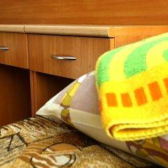 Гостиница Родина Номер категории Эконом с различными типами кроватей фото 4