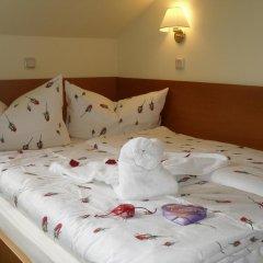 Отель Landhotel Dresden 3* Стандартный номер с различными типами кроватей