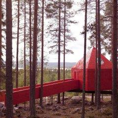 Tree Hotel детские мероприятия фото 2