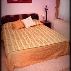 Hotel Vila Tina 3* Стандартный номер с различными типами кроватей фото 9