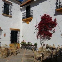 Отель Hacienda El Santiscal - Adults Only фото 9