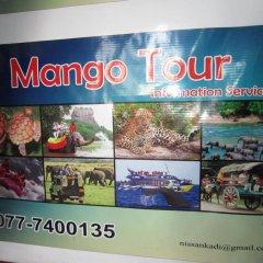 Отель Mango Village Шри-Ланка, Негомбо - отзывы, цены и фото номеров - забронировать отель Mango Village онлайн развлечения