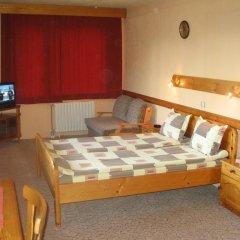 Family Hotel Savov 2* Стандартный номер