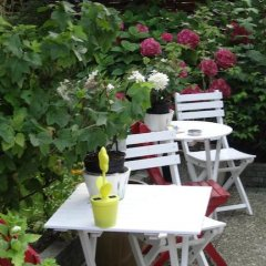 Отель Bed&Breakfast de Noordeling Нидерланды, Амстердам - отзывы, цены и фото номеров - забронировать отель Bed&Breakfast de Noordeling онлайн фото 18