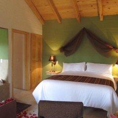 Bosque Escondido Hotel de Montana 3* Люкс с различными типами кроватей фото 4