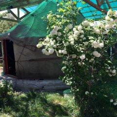 Отель Turkestan Yurt Camp Кыргызстан, Каракол - отзывы, цены и фото номеров - забронировать отель Turkestan Yurt Camp онлайн фото 7