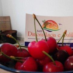 Отель B&B Dimora Lucia e Dalila Италия, Конверсано - отзывы, цены и фото номеров - забронировать отель B&B Dimora Lucia e Dalila онлайн детские мероприятия