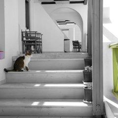 Отель Adamis Majesty Suites Греция, Остров Санторини - отзывы, цены и фото номеров - забронировать отель Adamis Majesty Suites онлайн фитнесс-зал