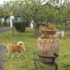 Отель Villa Hibiscus Джардини Наксос с домашними животными