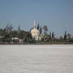 Отель St. Mamas Apts Кипр, Ларнака - отзывы, цены и фото номеров - забронировать отель St. Mamas Apts онлайн пляж фото 2