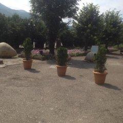 Отель 888 Армения, Иджеван - отзывы, цены и фото номеров - забронировать отель 888 онлайн фото 6