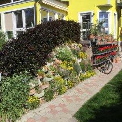 Отель AJO Garden Австрия, Вена - отзывы, цены и фото номеров - забронировать отель AJO Garden онлайн фото 3