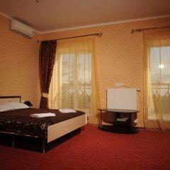 Гостиница Гостинично-оздоровительный комплекс Живая вода 4* Стандартный номер разные типы кроватей фото 5