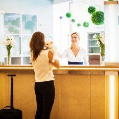 Отель Amarilis Чехия, Прага - 1 отзыв об отеле, цены и фото номеров - забронировать отель Amarilis онлайн интерьер отеля