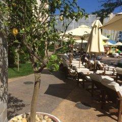 Отель Cascadas 7 Studio Болгария, Солнечный берег - отзывы, цены и фото номеров - забронировать отель Cascadas 7 Studio онлайн фото 7