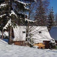Отель Camping Harenda Pokoje Gościnne i Domki Бунгало фото 21