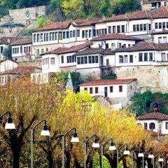 Отель Castle Park Албания, Берат - отзывы, цены и фото номеров - забронировать отель Castle Park онлайн фото 4