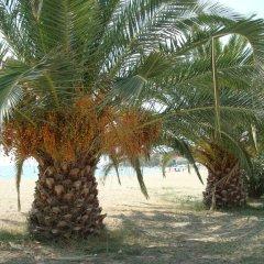 Отель Kalives Resort пляж фото 2