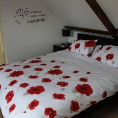 Отель Orillia House B&B & Holiday Cottages 3* Стандартный номер с различными типами кроватей фото 2