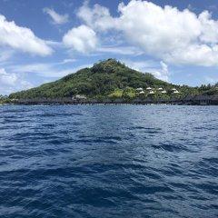 Отель Sofitel Bora Bora Marara Beach Resort Французская Полинезия, Бора-Бора - отзывы, цены и фото номеров - забронировать отель Sofitel Bora Bora Marara Beach Resort онлайн пляж фото 2