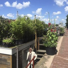 Отель Houseboat Westerdok Нидерланды, Амстердам - отзывы, цены и фото номеров - забронировать отель Houseboat Westerdok онлайн фото 2