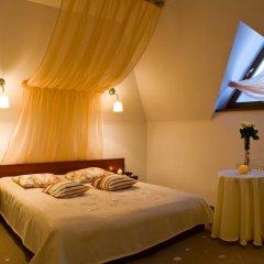 Гостиница Troyanda Karpat 3* Стандартный номер разные типы кроватей фото 12