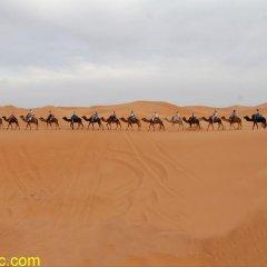Отель Riad Ali Марокко, Мерзуга - отзывы, цены и фото номеров - забронировать отель Riad Ali онлайн приотельная территория