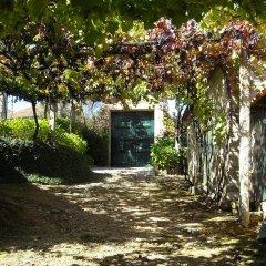 Отель Quinta das Aranhas Кастело-де-Пайва фото 3