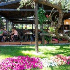 Dunav Hotel - Все включено гостиничный бар
