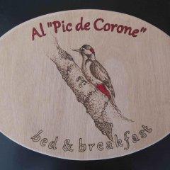 Отель Al Pic de Corone Палаццоло-делло-Стелла развлечения
