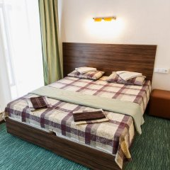 Гостиница Алмаз Стандартный номер с различными типами кроватей фото 45