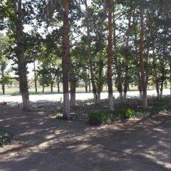Гостиница Jar Jar Казахстан, Павлодар - отзывы, цены и фото номеров - забронировать гостиницу Jar Jar онлайн приотельная территория