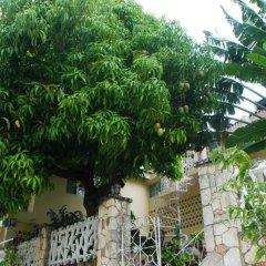 Отель Mango Tree Peaceful Pension фото 2