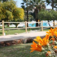 Отель Vila Petra Aparthotel Португалия, Албуфейра - отзывы, цены и фото номеров - забронировать отель Vila Petra Aparthotel онлайн фото 3