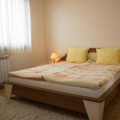 Отель VIKONI Болгария, Банско - отзывы, цены и фото номеров - забронировать отель VIKONI онлайн комната для гостей фото 5