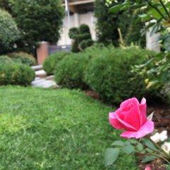 Отель Rosa del Grappa Италия, Роза - отзывы, цены и фото номеров - забронировать отель Rosa del Grappa онлайн фото 2