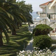 Отель Miramare Hotel Греция, Ситония - отзывы, цены и фото номеров - забронировать отель Miramare Hotel онлайн фото 5