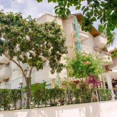 Отель Green Palm 3* Стандартный номер фото 2