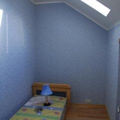 Гостиница Белый Грифон Номер Эконом с различными типами кроватей фото 19