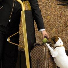Отель Altis Avenida Hotel Португалия, Лиссабон - отзывы, цены и фото номеров - забронировать отель Altis Avenida Hotel онлайн с домашними животными